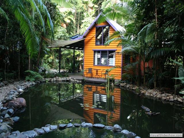 Rainforest Hideaway